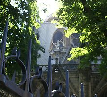 behind Notre Dame, Paris by BronReid