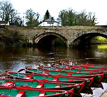 Boating on the River Nidd  by Trevor Kersley