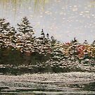A Lakes Touch - Algonquin National Park by Timothy Roberts
