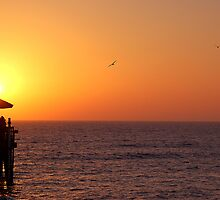 Sunset on the Gulf of Mexico by Ralph Angelillo