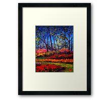 A Vibrant Day in Keukenhof Framed Print