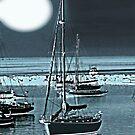 Vineyard Harbor Moon by Dick  Iacovello
