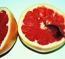 grapefruit by Portia Greenwood