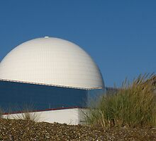 In The Rough ! Sizewell, Suffolk by wiggyofipswich