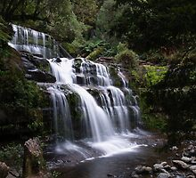 Liffey Falls by CezB