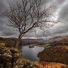 Grasmere by David Robinson