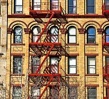 The colors of Harlem by Jean M. Laffitau