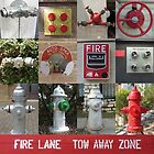Hydrants of Austin by Shaun Goffe