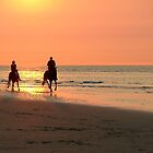 Horse ride at sunset by Adri  Padmos