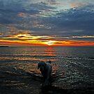 By the sea by Trine