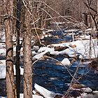 Icey Stream by Mark David Barrington