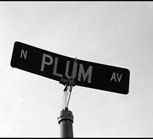 Peach, Plum, Pear by Elisha Riley