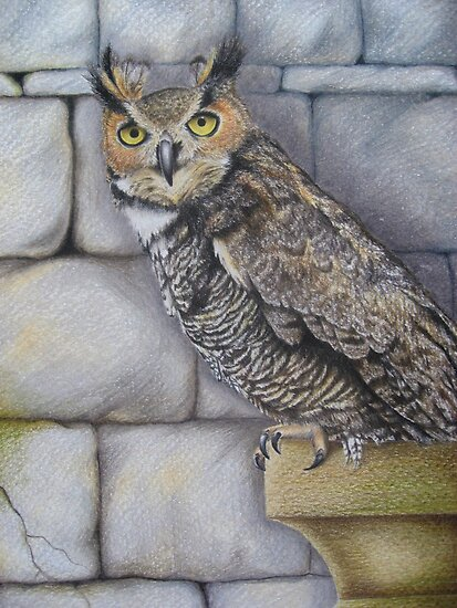 Great Horned Owl - Castle dweller by lanadi