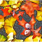 Late Autumn Leaves by Mark Ross