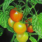 Tomatoes - Garden treat by lanadi