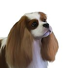 Cavalier King Charles Spaniel by Cazzie Cathcart