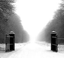 iiiil><liiii by Angus Clyne