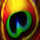 Peacock Eye Feather by Kym Howard