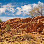 Sand stone ridge in Kalahari by Rudi Venter