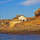 Deserted house on Halifax island by Rudi Venter