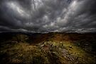 From Loughrigg by David Robinson