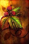 Raspberries &amp; Raindrops by Renee Dawson