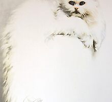"""""""White Persian Cat"""" Oil on Canvas by Sara Moon"""