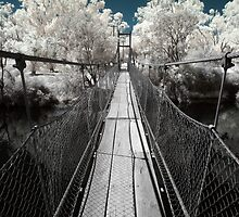 Swing Bridge ~ York, WA  by Pene Stevens