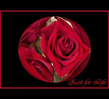 Red Roses Zest for Life by artcor7