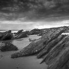 Cold Mallacoota Coast by Andrew Schweitzer