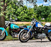 Two Old Harleys by pixsellchix1