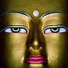 prince gautama. the buddha, india by tim buckley | bodhiimages
