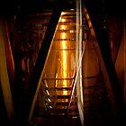 The Fresnel lens by Jodi Morgan