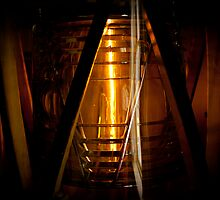 The Fresnel lens by Jodi Morgan