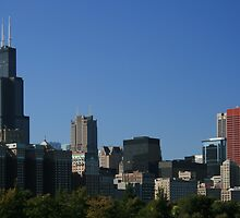 Chicago Skyline on a Cloudless Day by Richard McIntyre