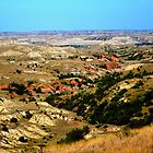Badlands by codyathomas