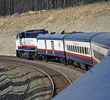 Rocky Mountaineer by kathiemt