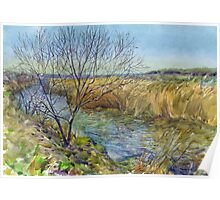 Morning on the lake. Spring. Watercolors from nature. Poster
