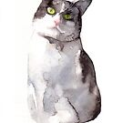 Black and White Cat by Katie Lancaster