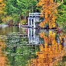 Reflections of the Seasons on Island Pond by Monica M. Scanlan