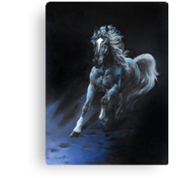 """White Stallion"" Oil on Canvas Canvas Print"