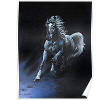 """White Stallion"" Oil on Canvas Poster"
