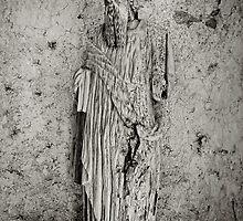 forgotten statue, Villa Cimbrone, Ravello, Amalfi Coast, Campania, Italy by Andrew Jones