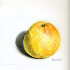 Grapefruit by Lois Keller