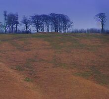 The Cherhill White Horse- Whiltshire  by Colin J Williams Photography