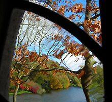 Through an old window by pix-elation