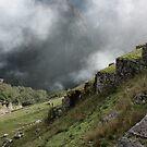 Machu Picchu: Stairs by tpfmiller