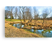 Meandering Creek Canvas Print