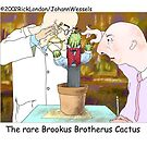 Best-Dressed Cactus by Londons Times Cartoons by Rick  London
