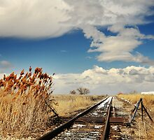 Railroad on Spring Afternoon by Ryan Houston